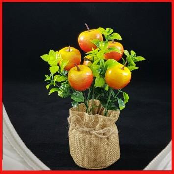 שיח תפוחים אדומים בעציץ יוטה לעיצוב