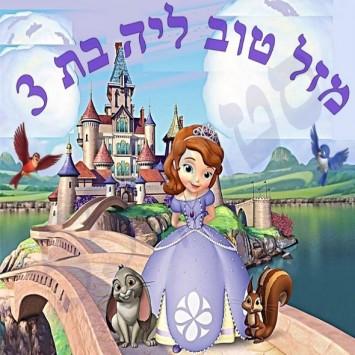 הנסיכה סופיה - תמונה 2