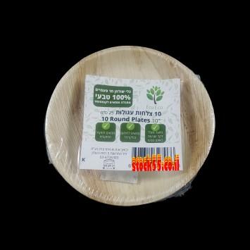חבילת צלחות מתכלות למנה עקרית