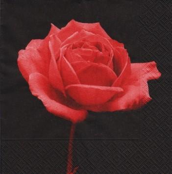 מפיות נייר  איכותיות - שושנה אדומה